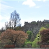 view_of_edinburgh_castle_with_princes_street_gardens_in_foreground_(credit_marketing_edinburgh)_original-thumb